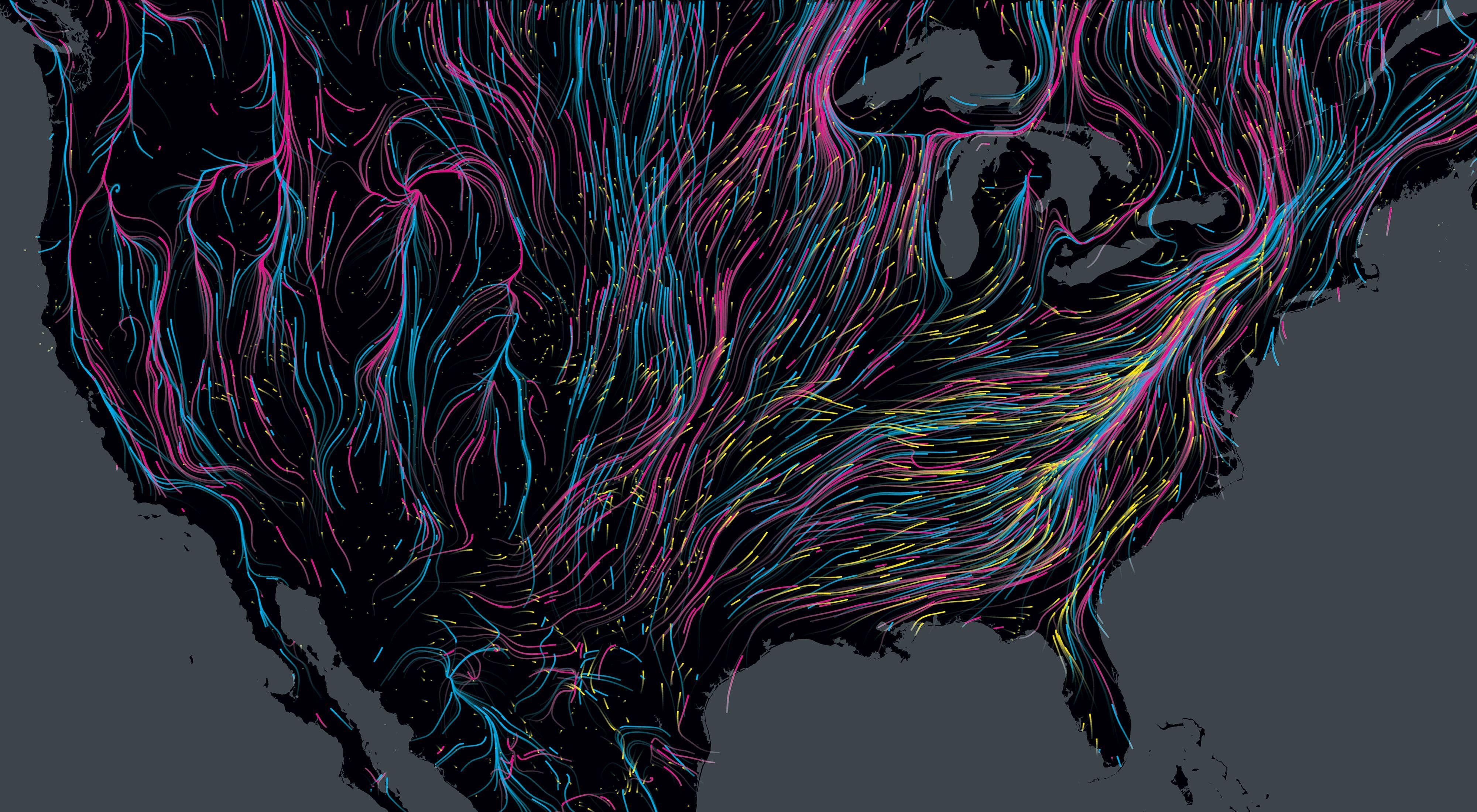 Un mapa de los Estados Unidos se entrecruza con los coloridos caminos que toman diferentes animales mientras migran.