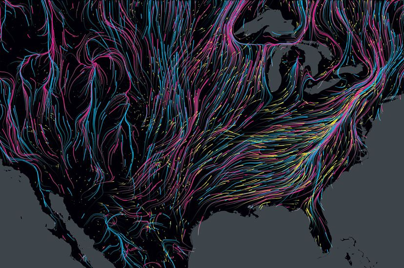 Colorful lines show the migration routes of mammals, birds and amphibians across the United States, represented as a large black land mass.