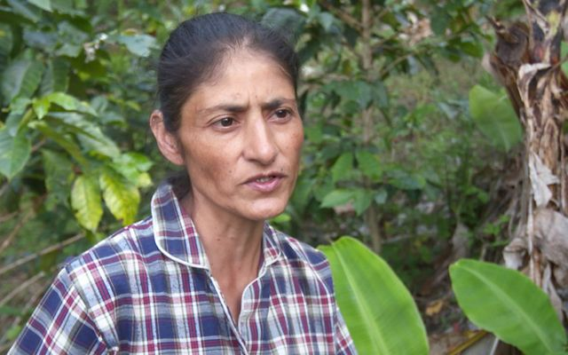Maria Esmeralda Marcillo lives and farms in the Cauca River Valley, Colombia.