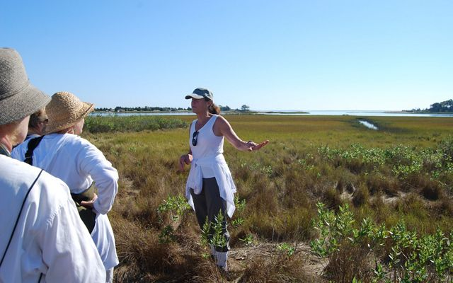 A woman at center wearing a baseball cap, white tank top and black pants leads a tour group of individuals through a tidal wetland.