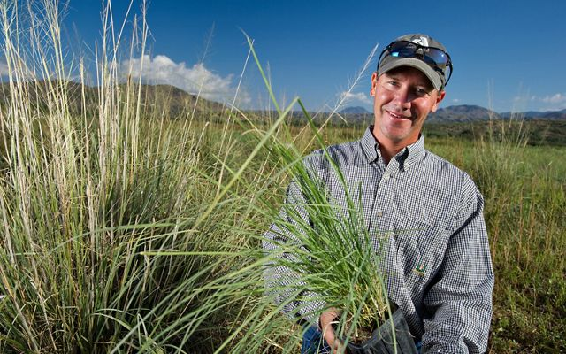 Mark Haberstich holding a plastic pot containing native grasses ready to be planted at a restoration site.