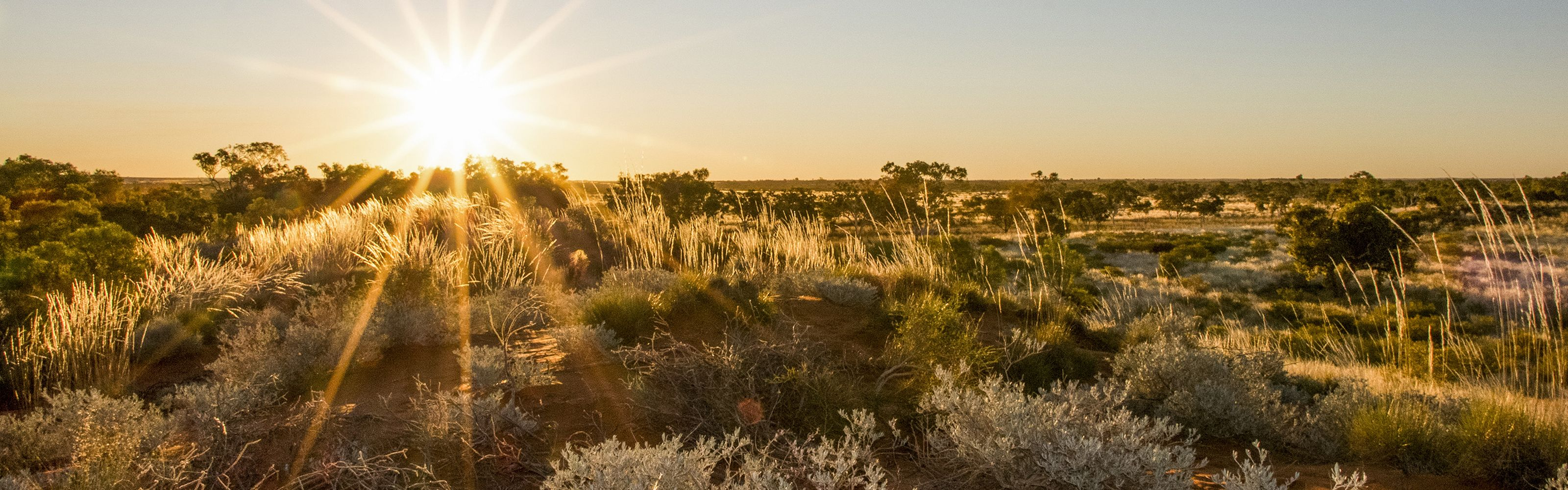 Sunset over the sand dunes on Martu country, Western Australia.