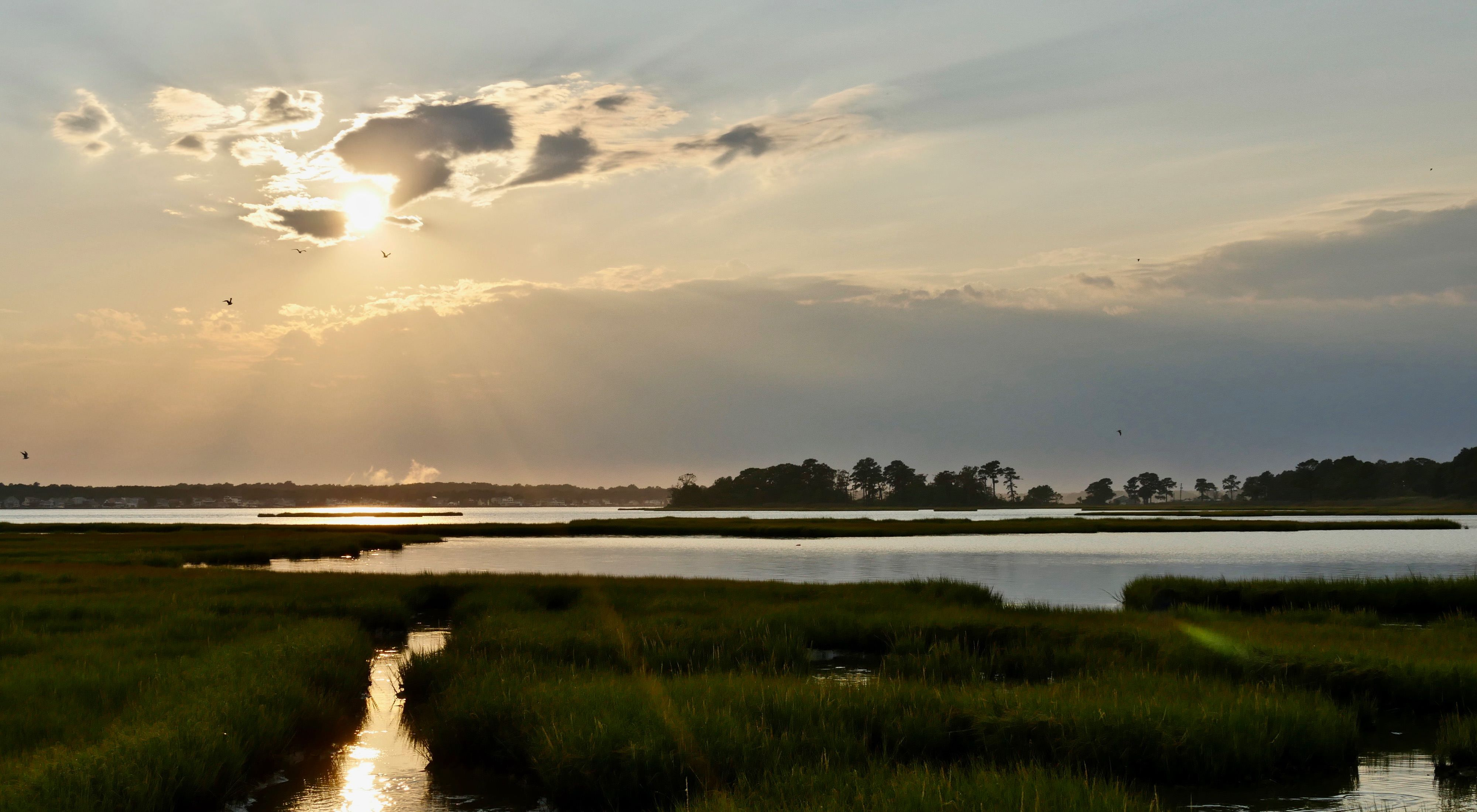 The sun begins to set over wetlands in Maryland just after a passing September thunderstorm.