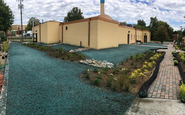 Bioswale project in construction showing newly planted greenery, rock dams and lots of grass seed.