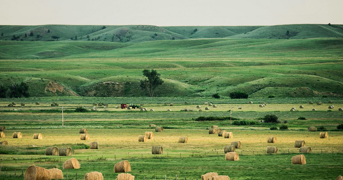 Hay bales at the Matador Ranch.