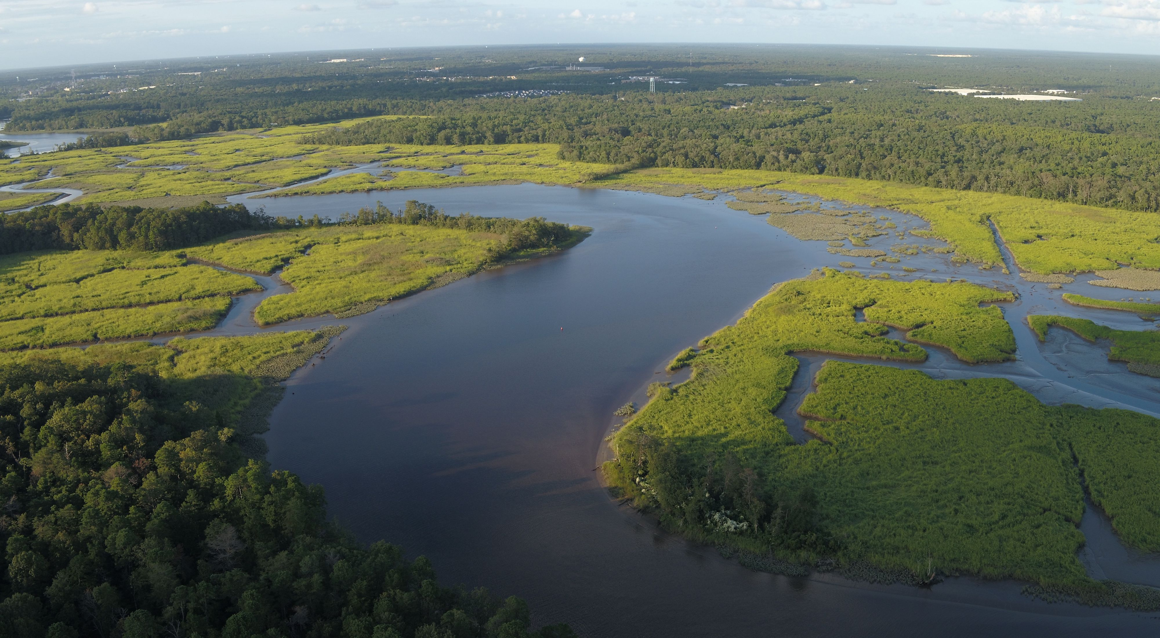 Aerial view of a stream and wetlands at Maurice River Bluffs Preserve.