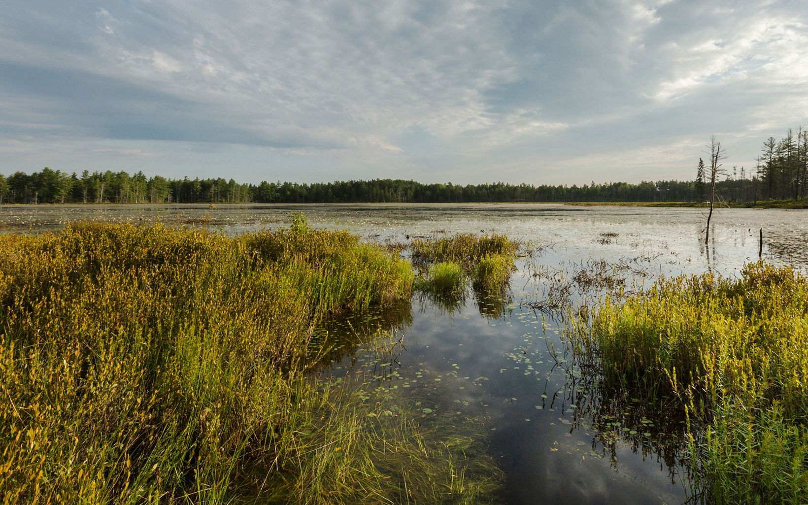 The 4,084-acre McMahon Lake Preserve lies within the watershed of the Two-Hearted River.