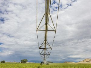 Meaker Farm, Montrose, Colorado. Circle irrigation is used in a test plot on the farm, in hopes of saving water. This is one of the sites toured by the Nature Conservancy in tandem with Pepsico demonstrating forest and fire management, and irrigation efficiency projects.