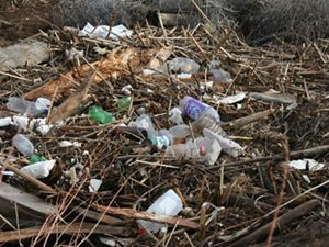 Close up view of a pile of garbage. Discarded cans, glass bottles and plastic milk jugs and soda bottles are scattered across a thick pile of sticks, logs and broken wood.