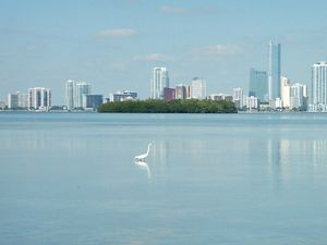 Biscayne Bay and Miami Skyline
