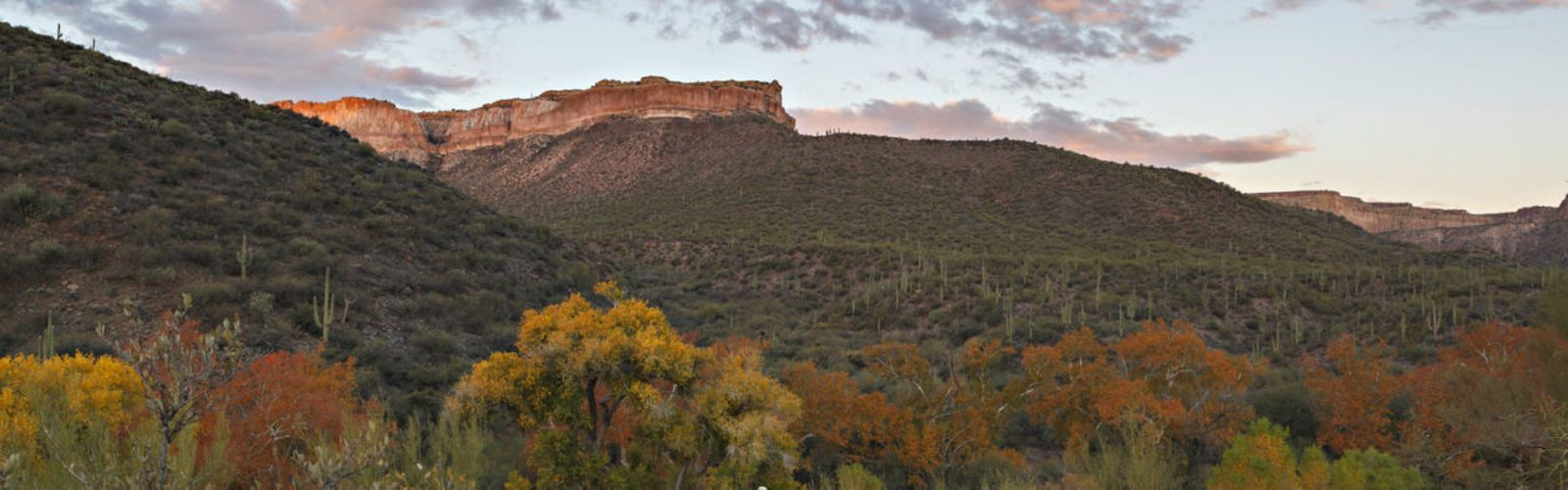 The vertical cliffs of Aravaipa Canyon stand as witness to the lowlands that meet the northern edge of the Galiuros in Arizona.