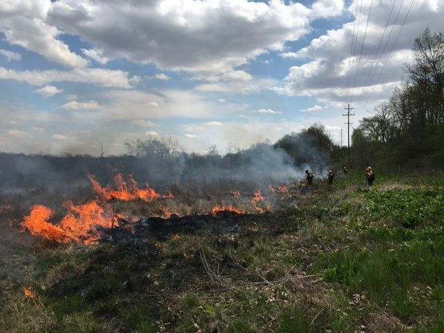 TNC staff participated in a prescribed burn at Ives Road Fen Preserve on May 6th, 2019.