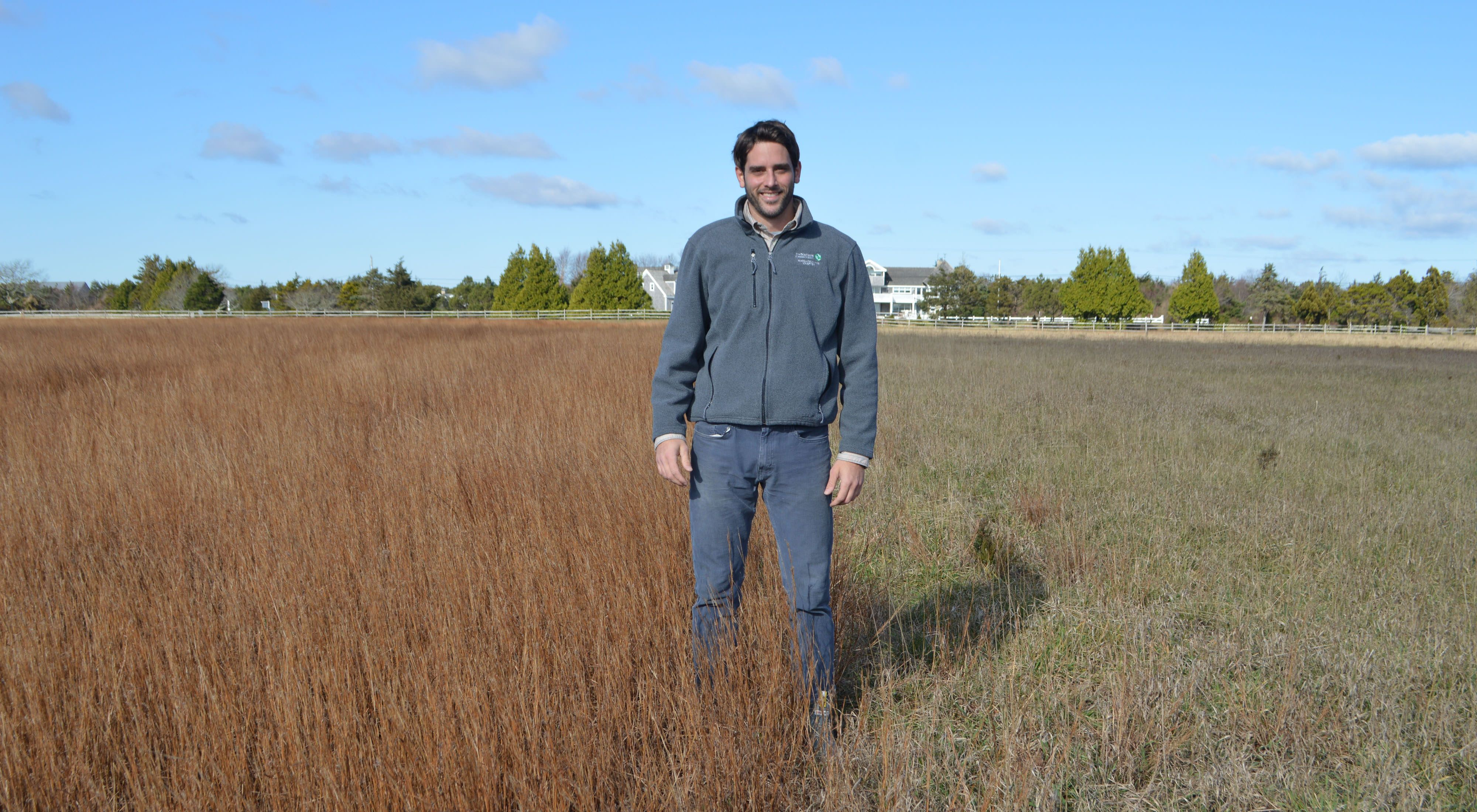 A man stands in a grassland on Martha's Vineyard, on the left side the grass is brown, on the right, it is green.