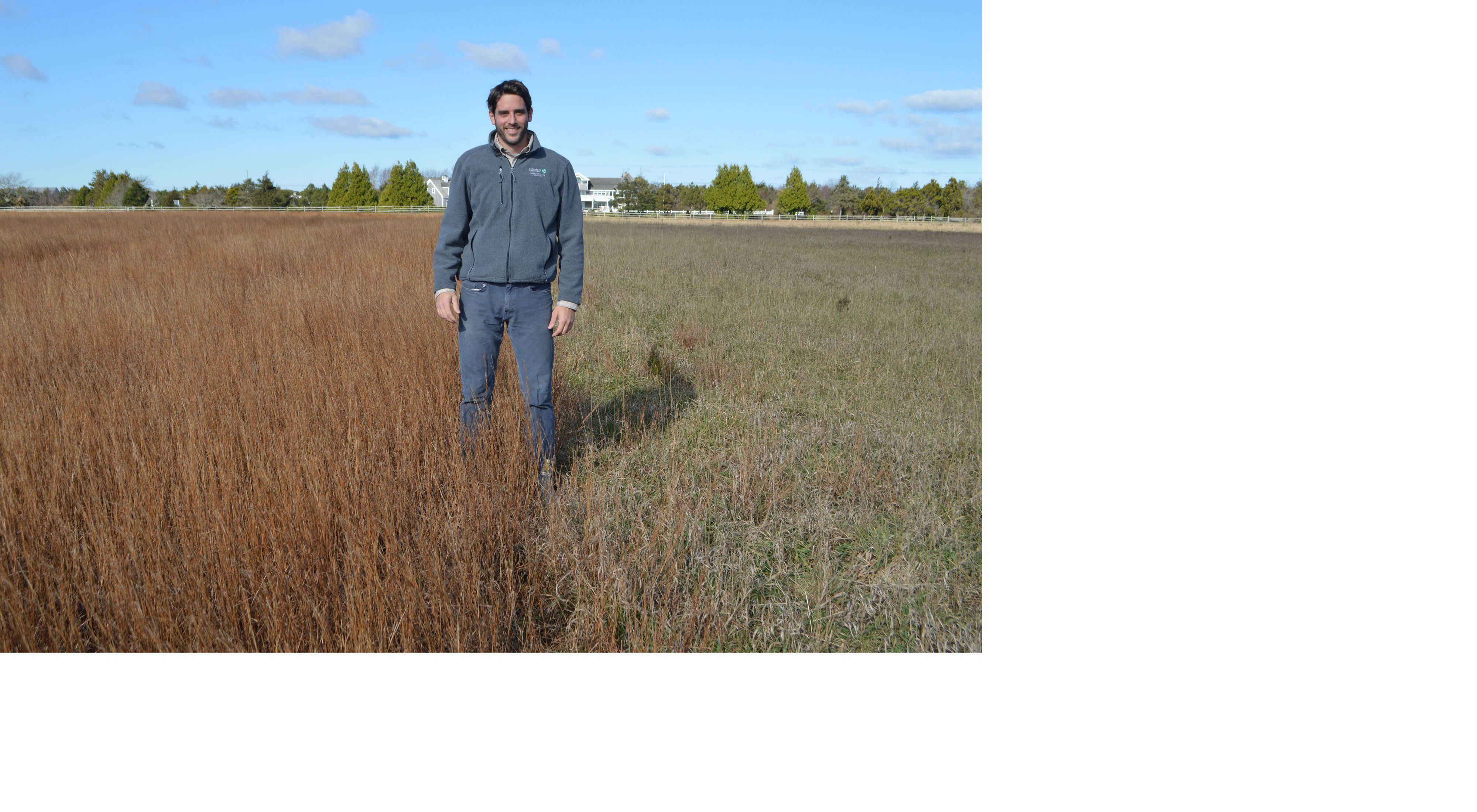 Mike Whittemore, land steward for TNC in Massachusetts, stands between native sandplain grassland that is under restoration (to his right) and former agricultural land.