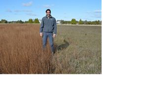 A man stands in a grassland on Martha's Vineyard