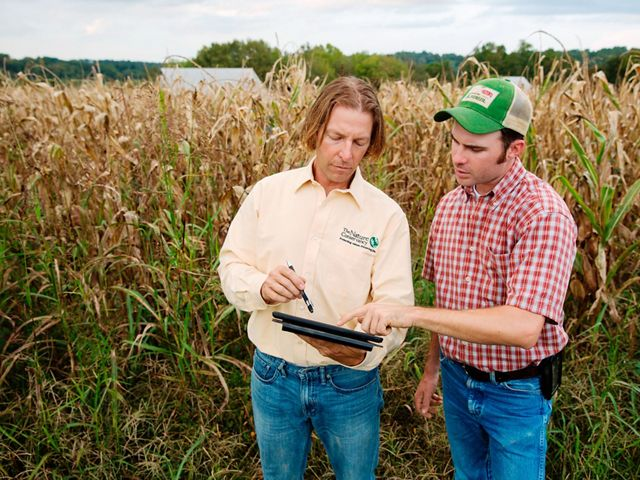 Two men study a document in front of a corn field.