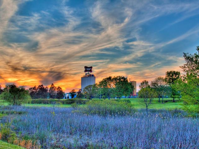 Moody, colorized image of MillerCoors plant at sunset with blue wetland vegetation in foreground