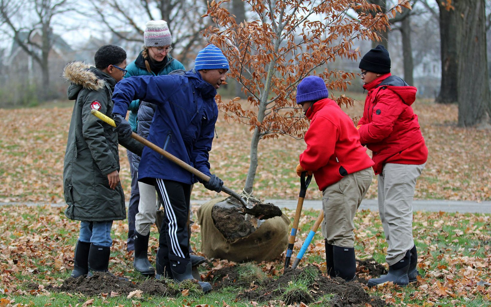 Students plant trees with the Urban Ecology Center in Washington Park.