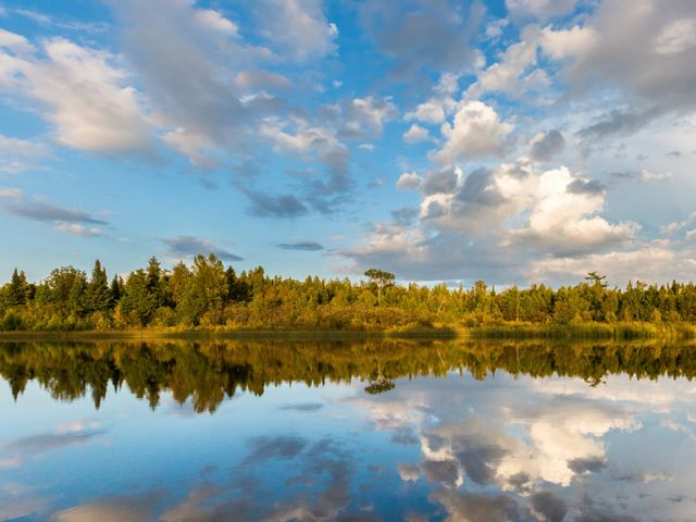 Clouds and the shoreline full of trees reflect in a river.