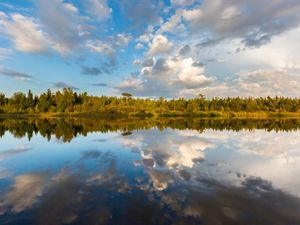 A leisurely canoe trip on Mink River in Door County provides a great opportunity for bird watching.