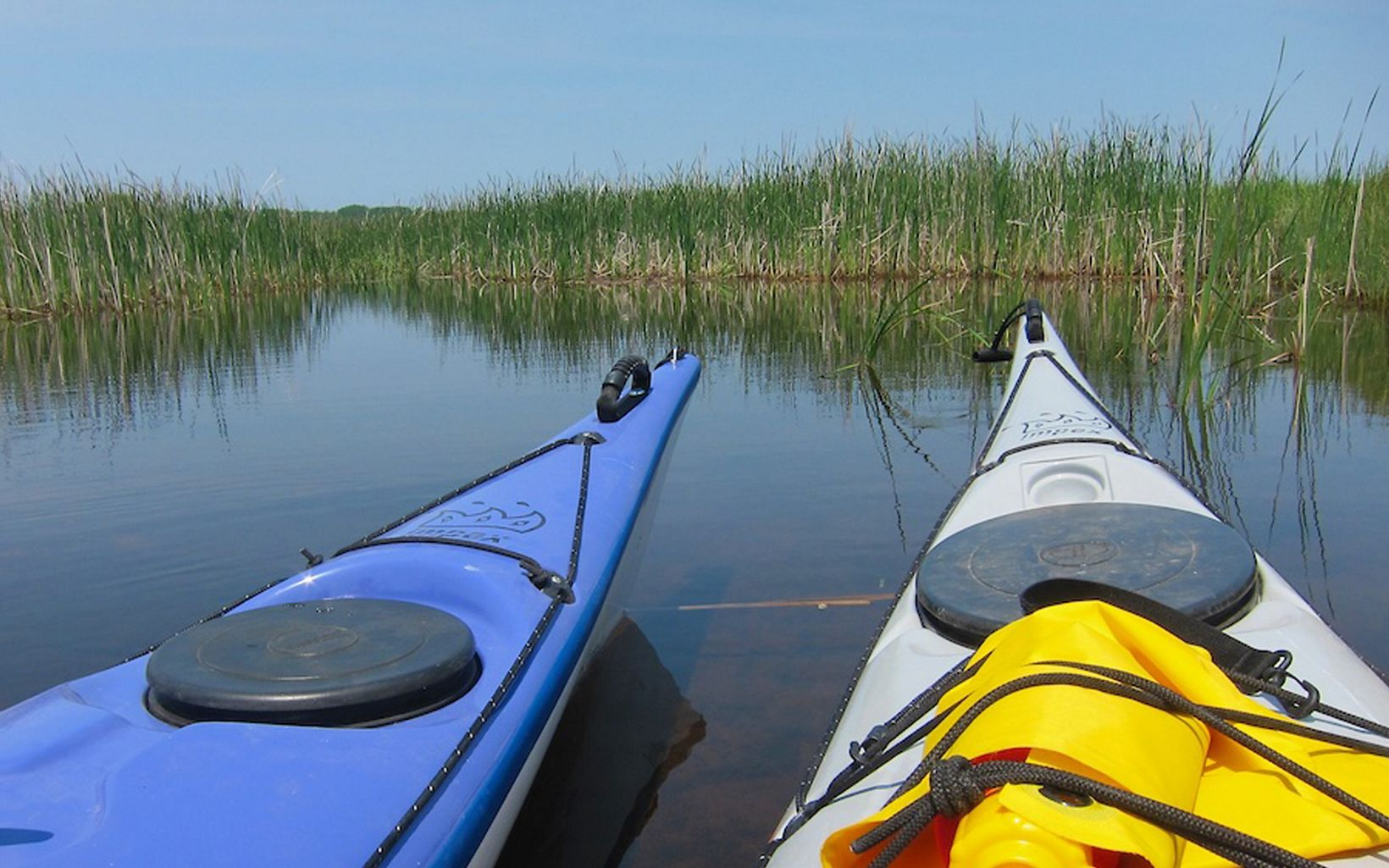 Mink River Estuary is a great place to paddle and do a little bird-watching.