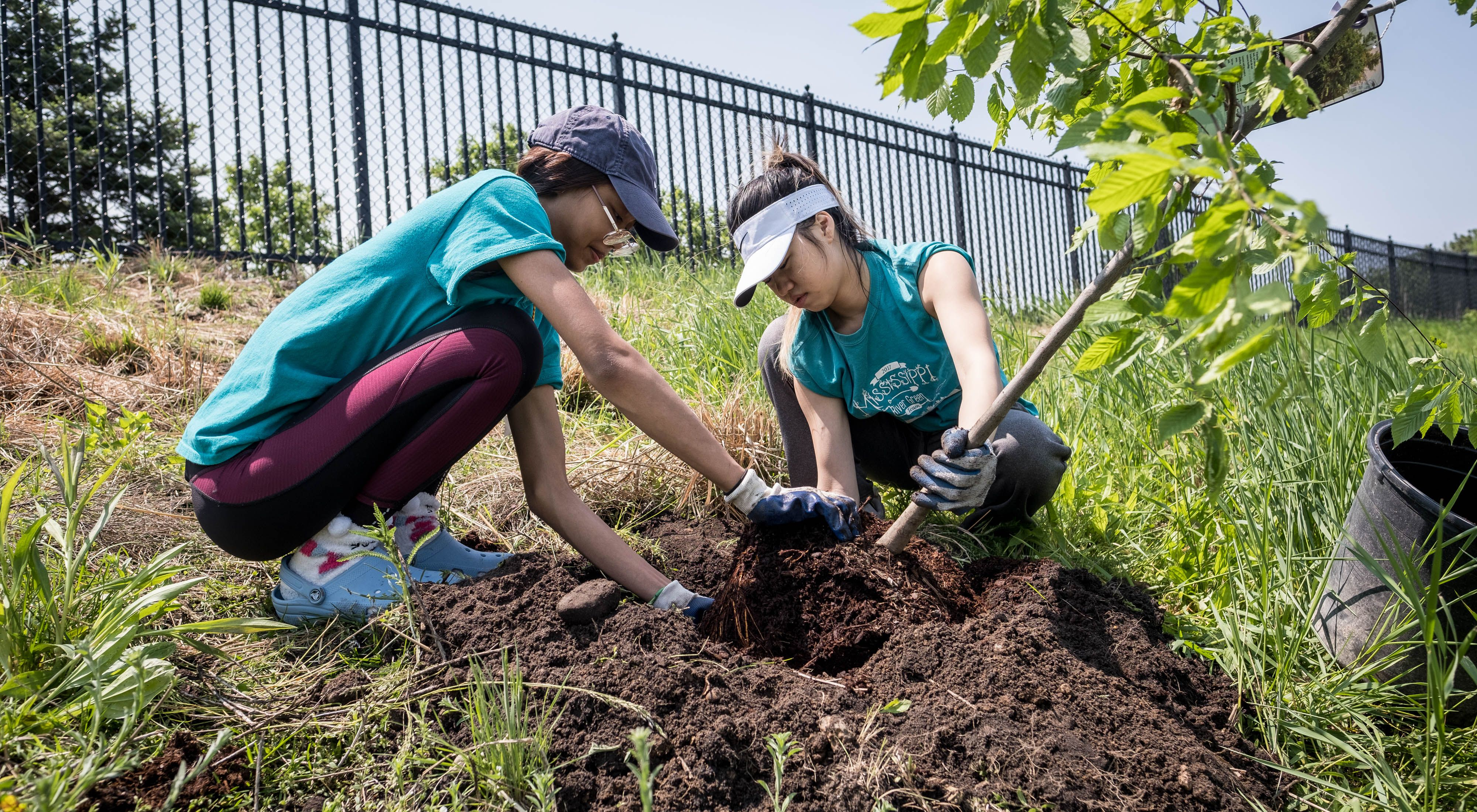 in north Minneapolis, organized by The Nature Conservancy and partners