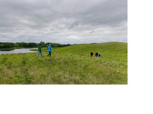 People hiking through a green prairie near a pond.