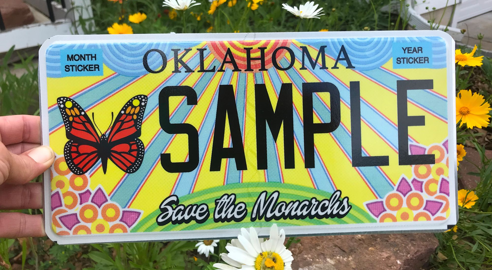 Hand holding monarch-themed license plate.