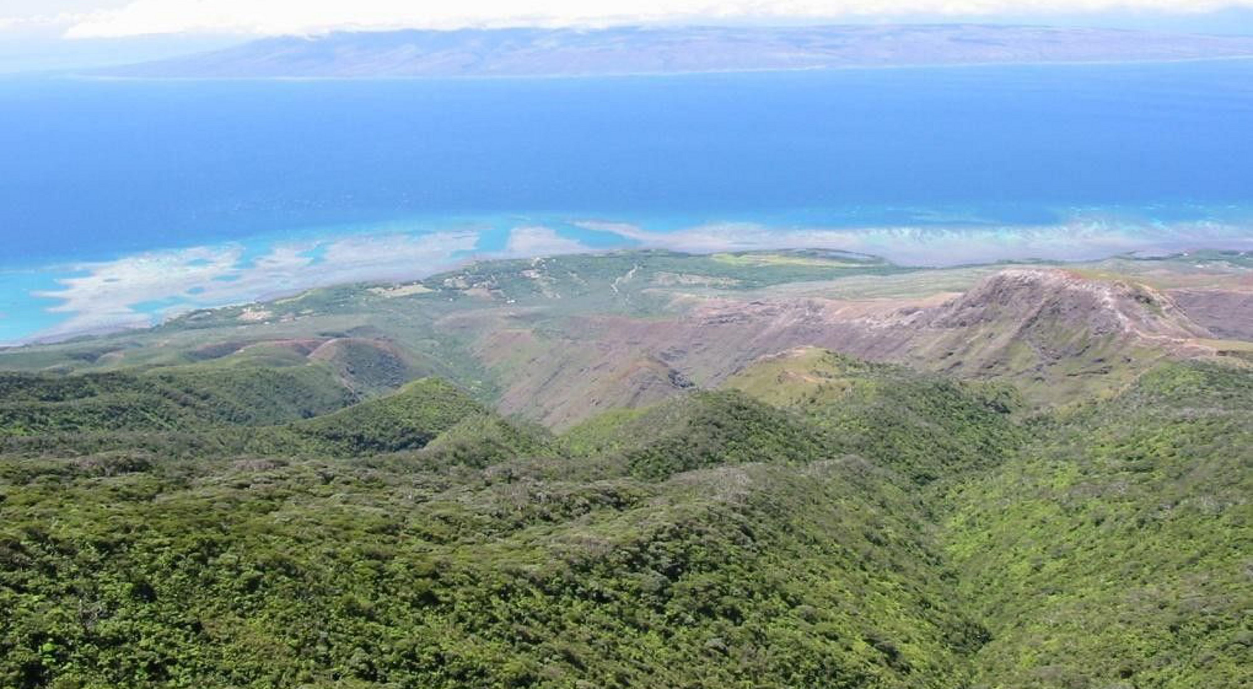 Aerial view of forests and mountains on Moloka'i