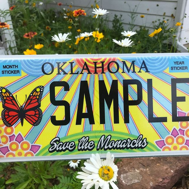 Monarch license plate in front of Oklahoma native wildflowers.