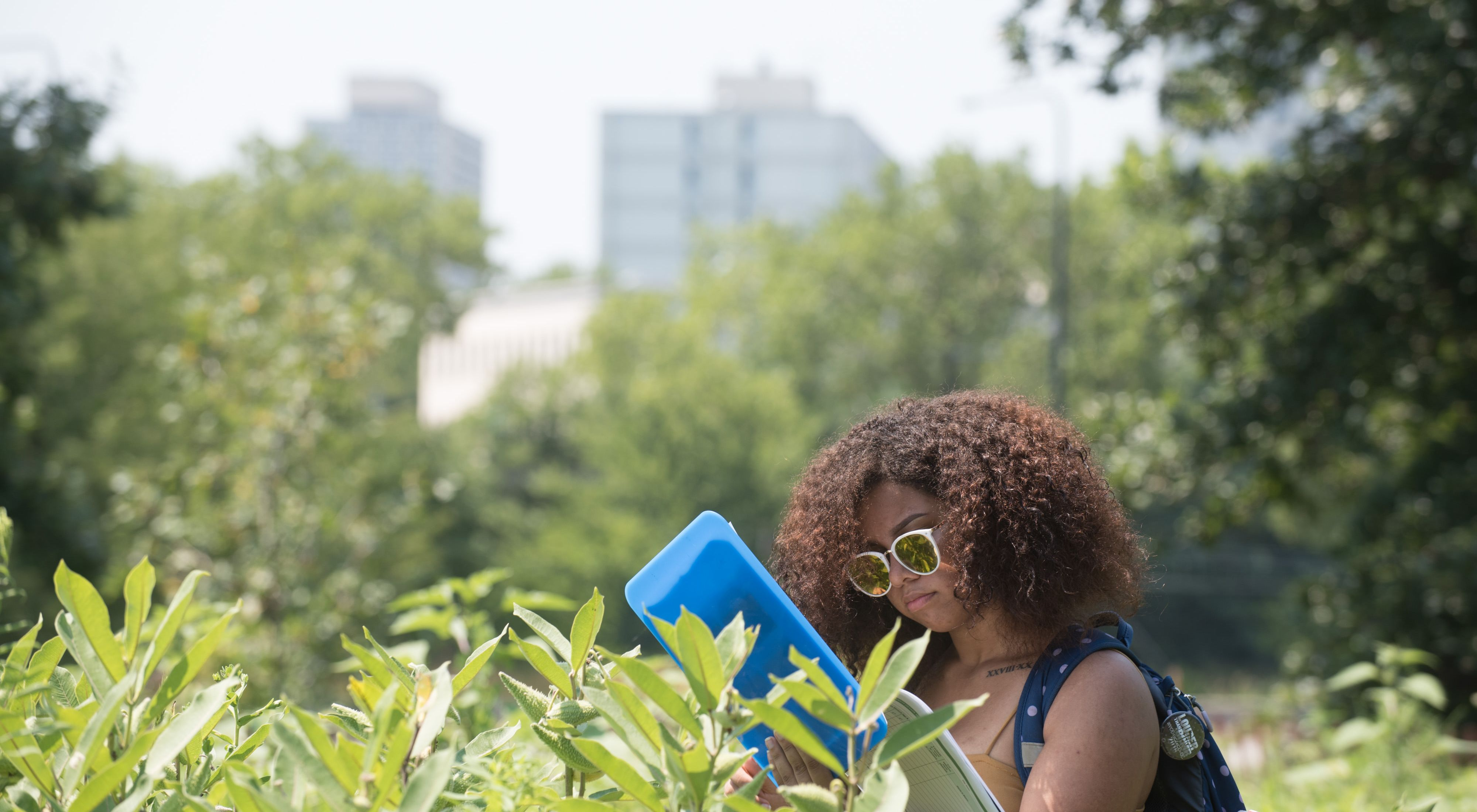 A woman checks her notebook while monitoring for monarch butterflies in a prairie with city buildings in the background