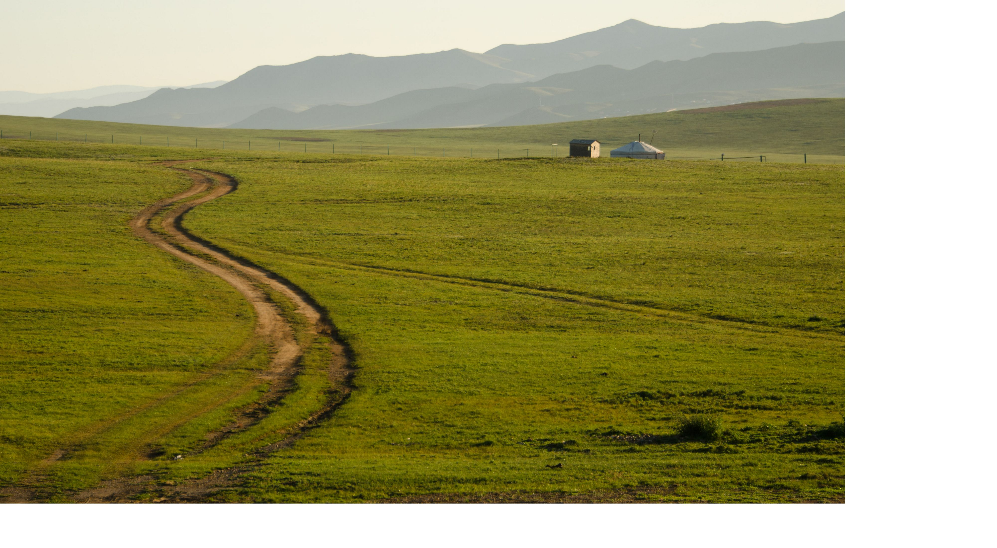 on the open grasslands of Mongolia in central Asia