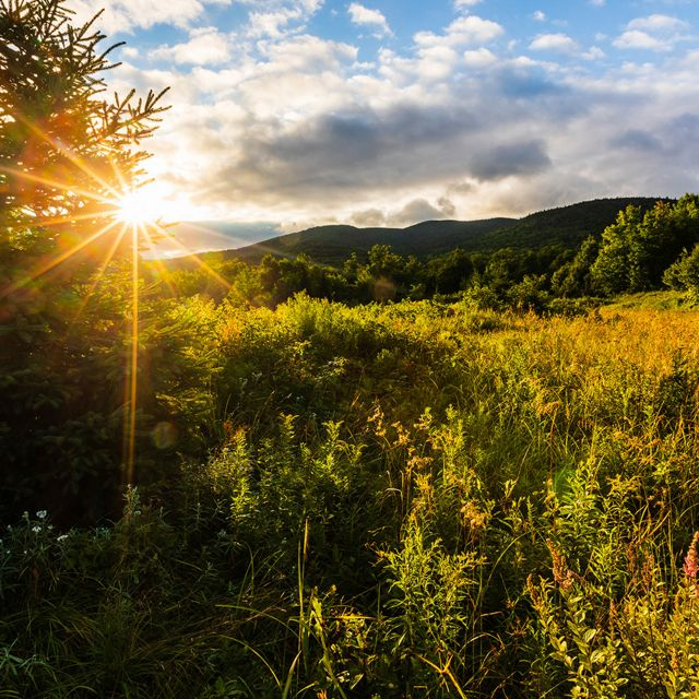 The sun rises above a meadow and mountain.