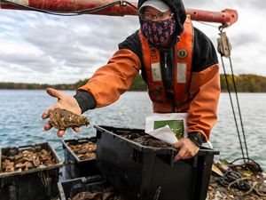 A man wearing orange rain gear stands on a boat surrounded by large containers of oysters. He extends his arm to show the large oyster he holds in his hand.