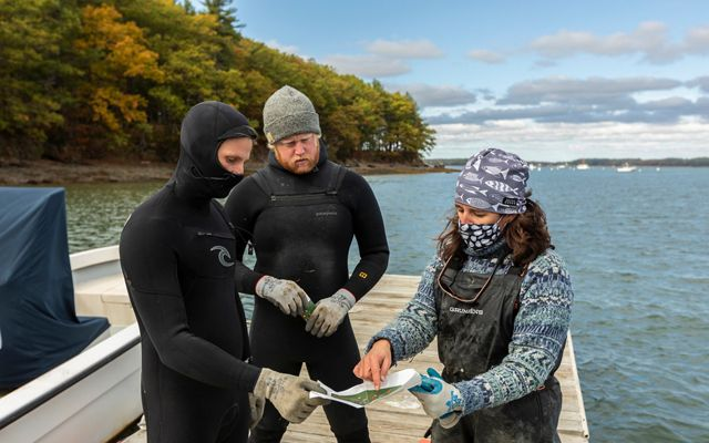Three oyster farmers discuss restoration plans while standing on a dock, surrounded by blue water.