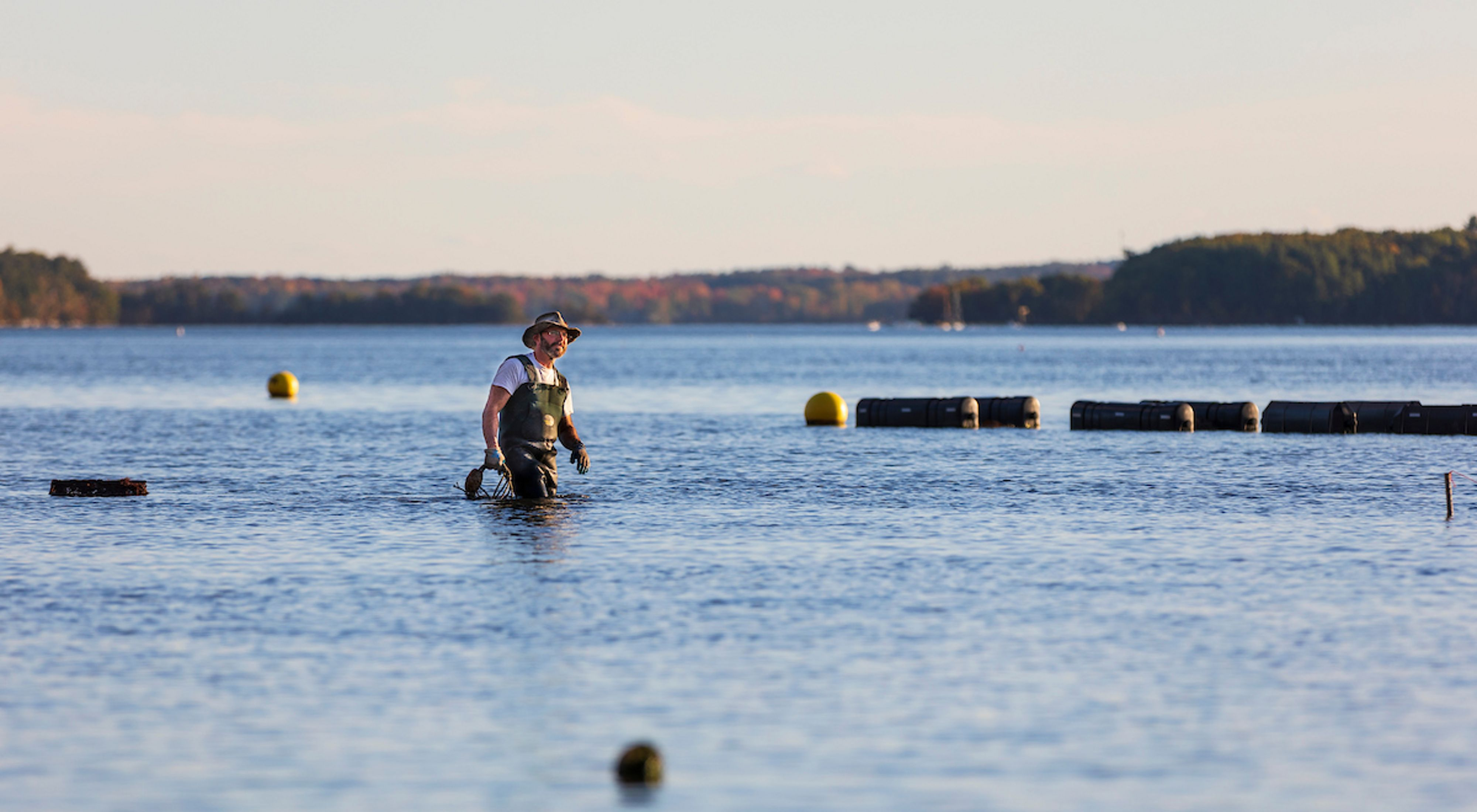 Brian Gennaco of the Virgin Oyster Company stands in the water of his oyster farm in Little Bay