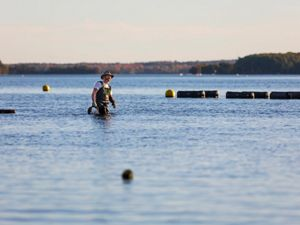 An oyster farmer wades in shallow water