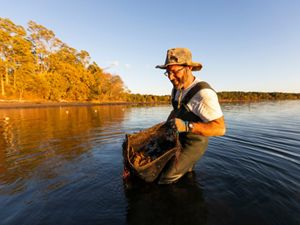 Brian Gennaco, owner of the Virgin Oyster Company, harvests oysters from an oyster bag on his oyster farm in Little Bay in Durham, New Hampshire.