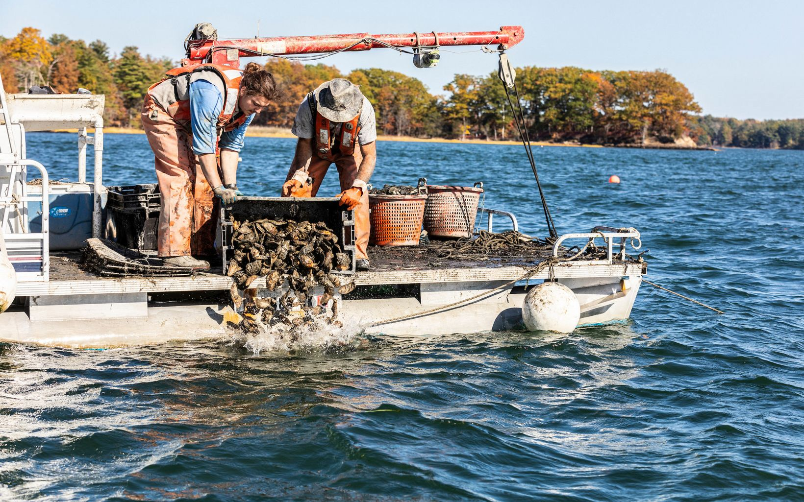 Two people on a boat dump oyster shells back into the water