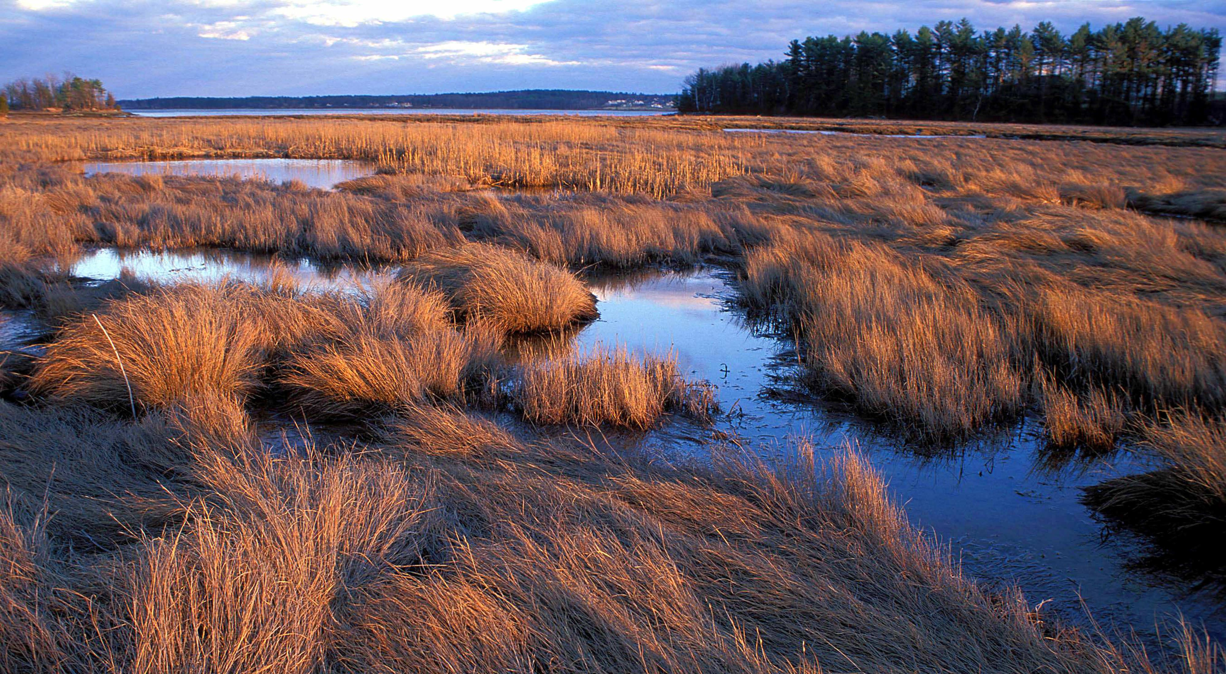 Sunset on the salt marsh at Lubberland Creek Preserve in Newmarket, New Hampshire.
