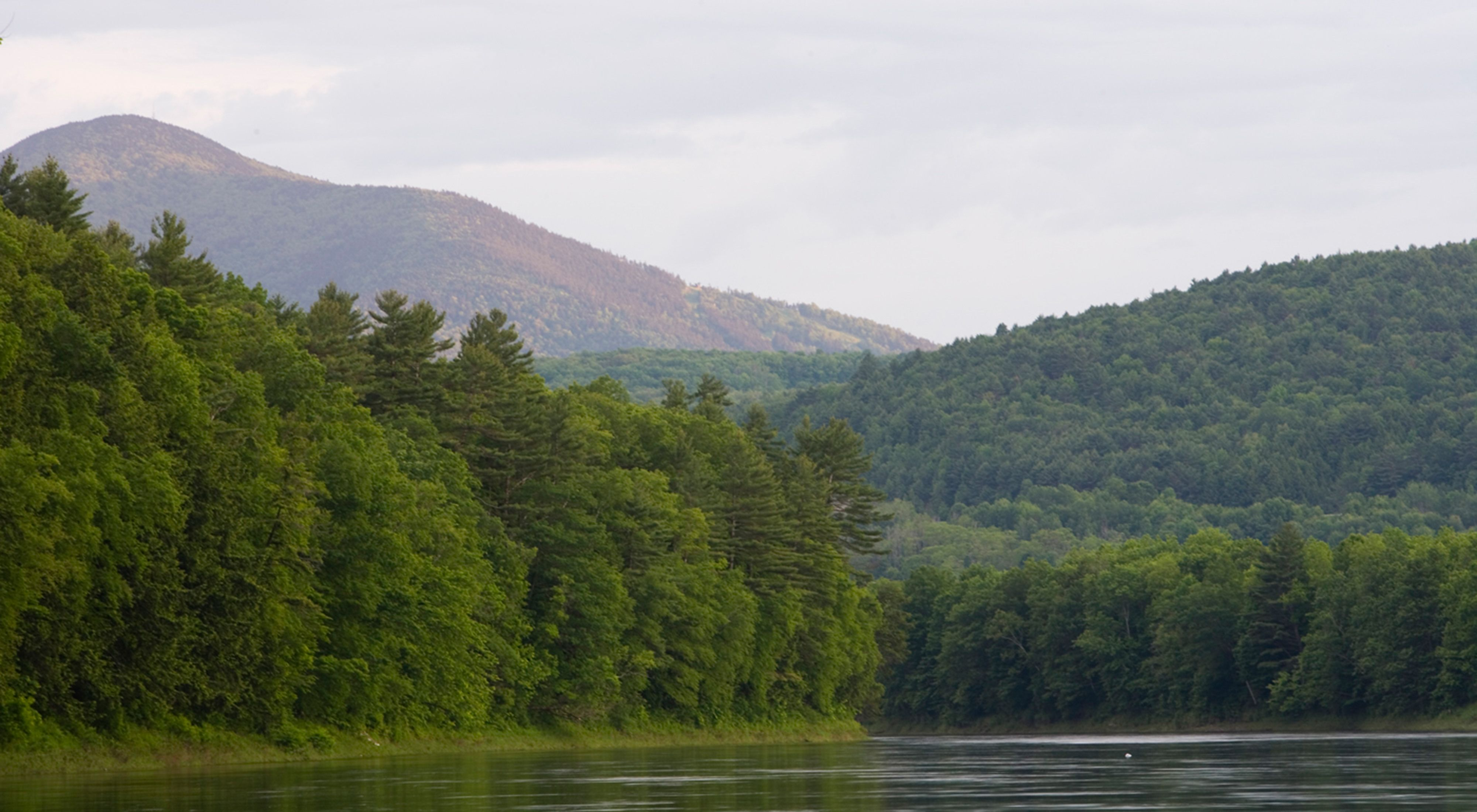 The Connecticut River flows past the Conservancy's Silverweed Seep Preserve in Plainfield, New Hampshire