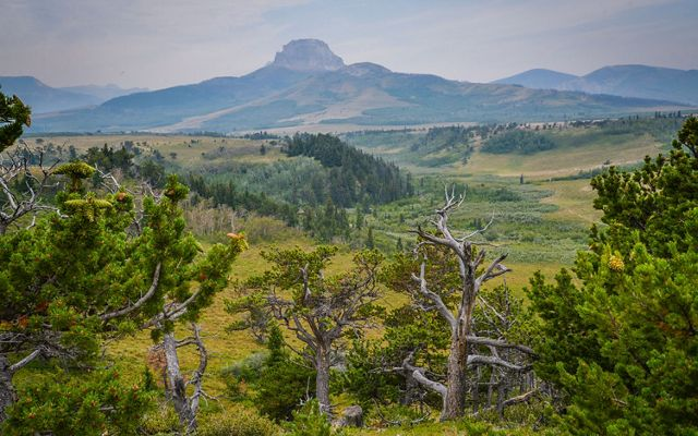 The Blackfeet Nation will guide the future use and stewardship of the Heart Butte property in partnership with TNC as the short-term owner.