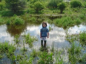 A young girl stands in the middle of a large, shallow pool of water with green grasses and plants popping up from the water.