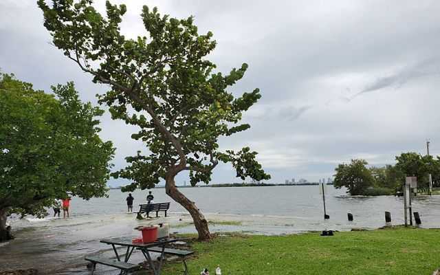 Morningside Park in Miami Florida during a King tide spills water over the shoreline, covering benches and picnic tables.