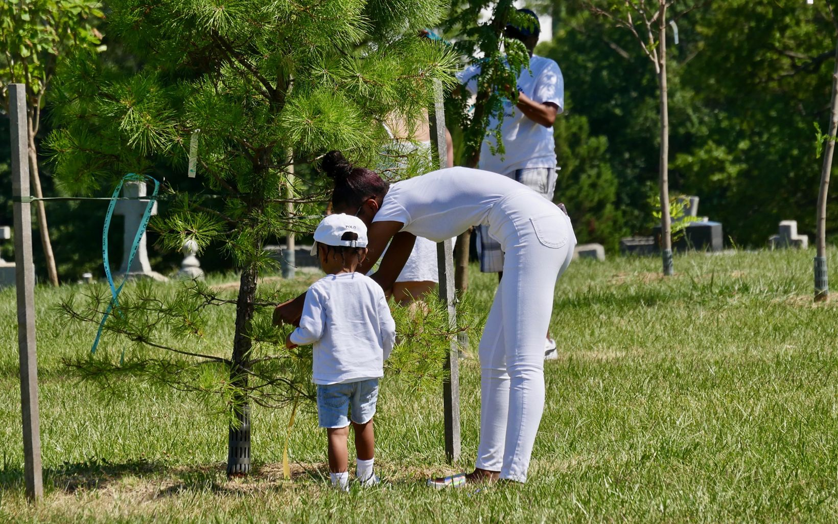 Members of the extended Weems family tie prayer ribbons to trees at Mount Olivet Cemetery during a celebration of the legacy of freedmen John and Arabella Weems.
