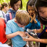 Kids gather around a specimen collected from a creek