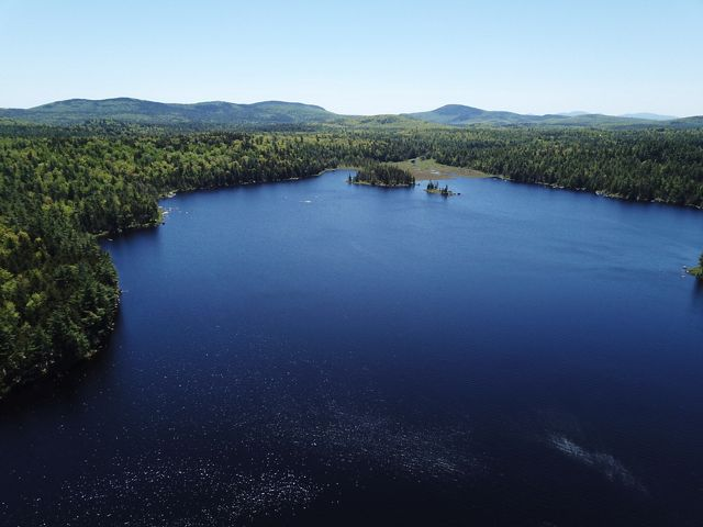 The forestlands around Narraguagus Lake play a critical role in purifying the water needed for native brook trout and salmon fisheries.