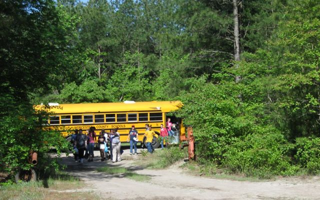 Middle school students Worcester County arrive at the planting site at Nassawango Creek Preserve.