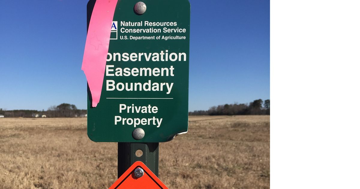 Conservation efforts at this preserve are supported by a volunteer stewardship committee in existence since 1979.