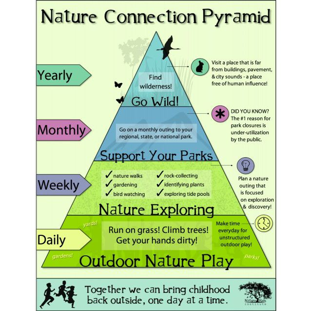How do you connect with nature every day? Every week? Every month? Every year??? Here is a guide to building meaningful relationship with the natural world from the bottom up.